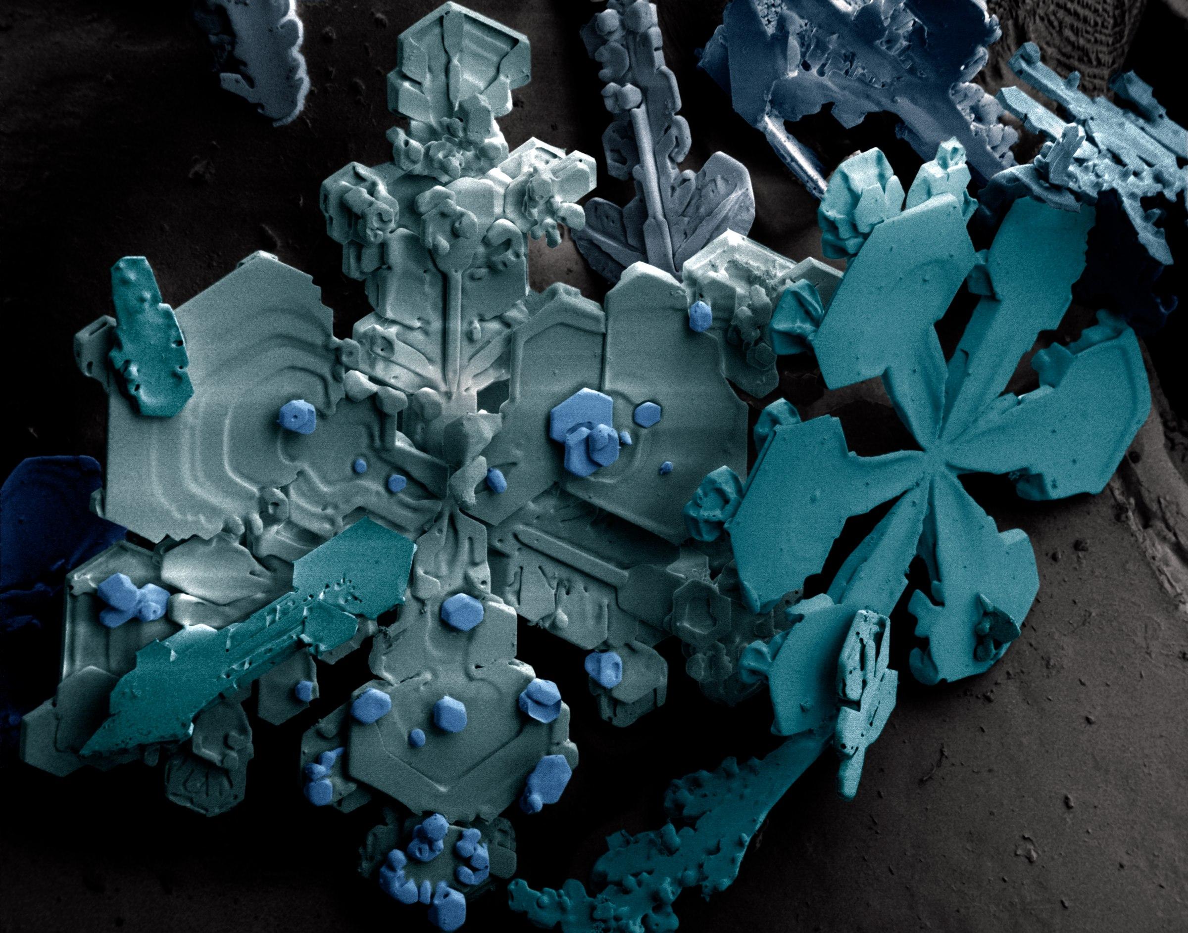 Schneekristalle bild unbekannt großbild klick